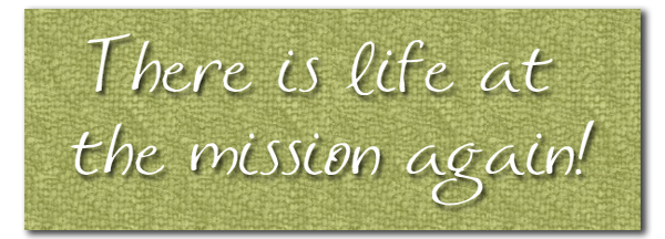 Life at the mission again pull quote