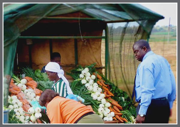 Zambian Market