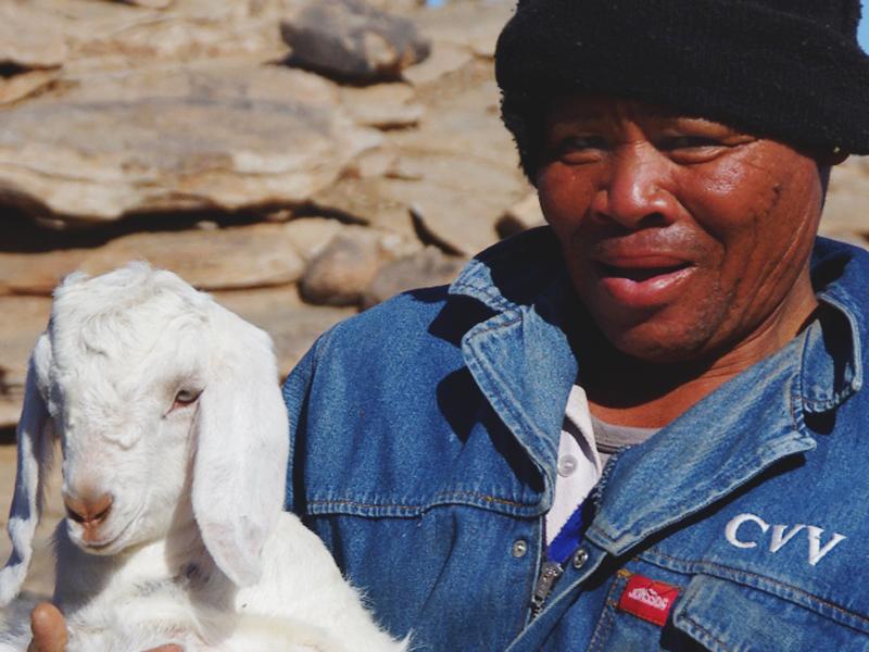 South Africa, Onseepkans, Goat-herders