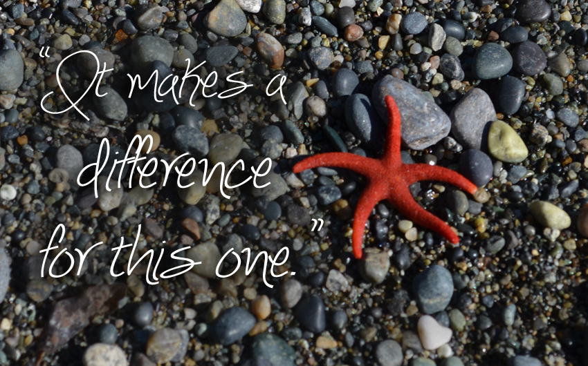 Web-it-makes-a-difference