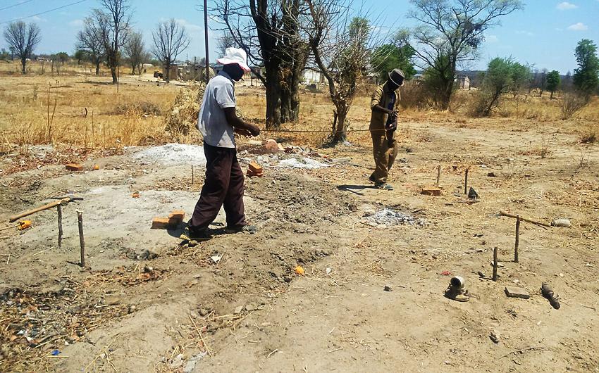 Zimbabwe, Microbusiness