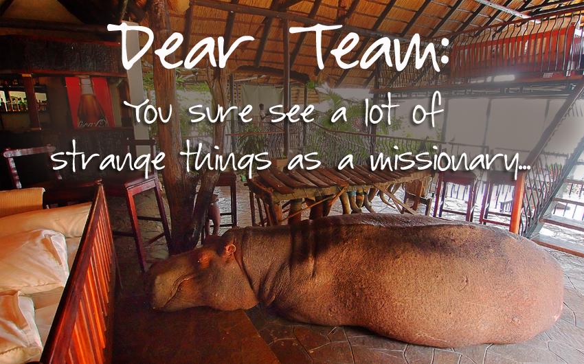 Zambia, Steve Evers, Johan Leach, Dear Team