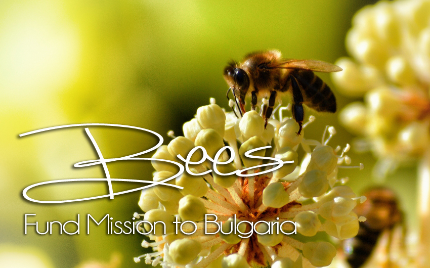 Bees Fund Mission to Bulgaria
