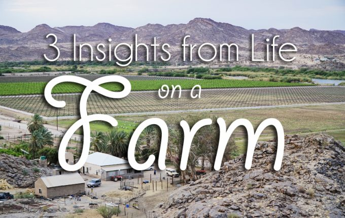 3 Insights from Life on a Farm