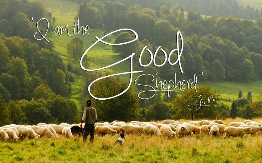 good shepherd,