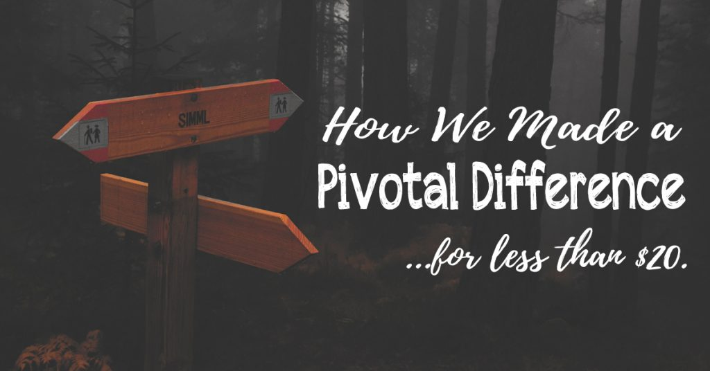 How We Made a Pivotal Difference…for less than $20.