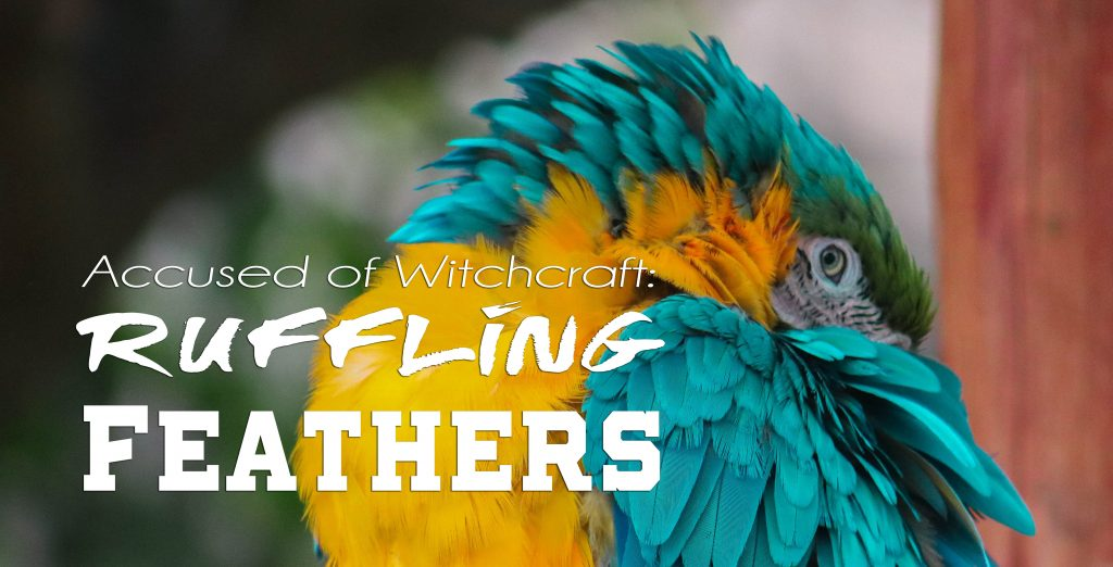 Accused of Witchcraft: Ruffling Feathers