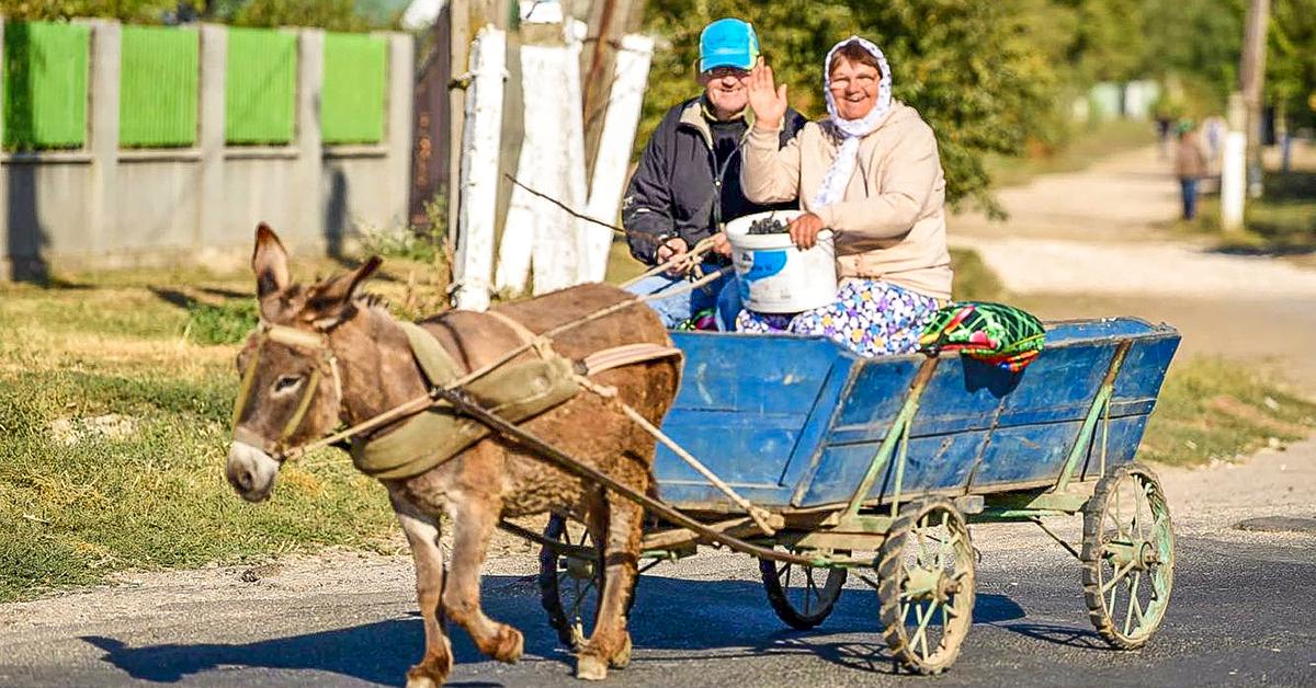 Moldova, Bread of Life