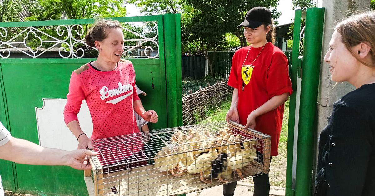 Moldova, Bread of Life, Ducks